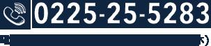 0225255283